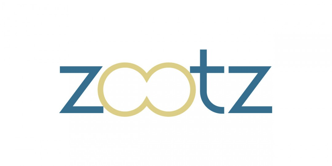 DPI_Holding_logo_ZOOTZ